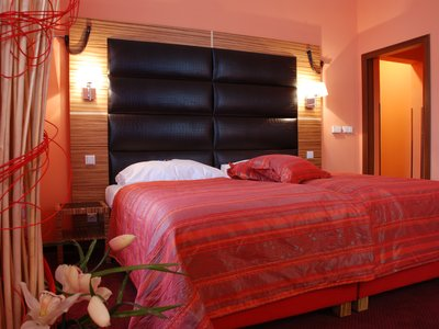 EA Hotel Sonata**** - double room